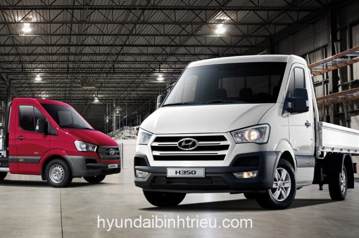 Hyundai Solati Ca Bin